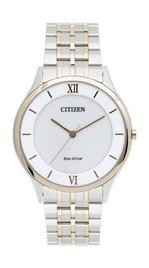 Citizen AR0075-58A